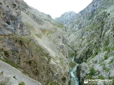 Ruta del Cares - Garganta Divina - Parque Nacional de los Picos de Europa; disfruta la naturaleza